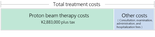 The Costs of Proton Beam Therapy